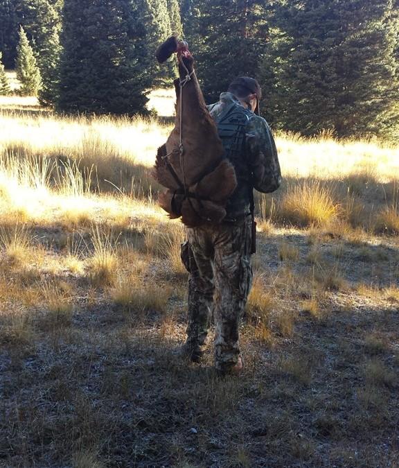 2014 Elk Hunt in New Mexico