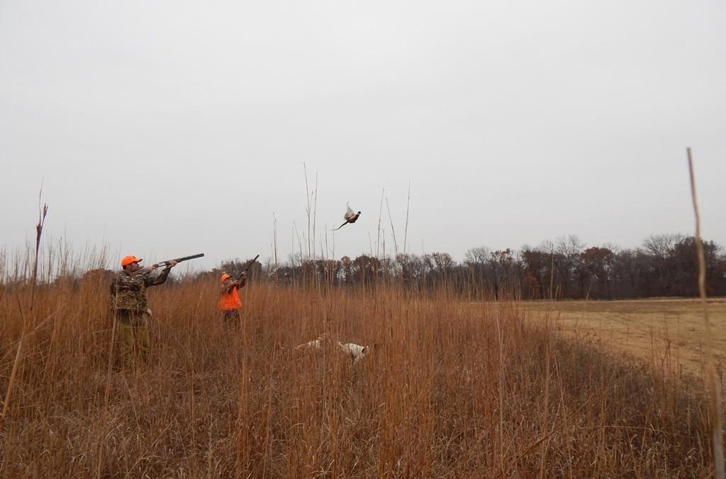 2014 Christmas Pheasant Hunt